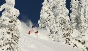 Ski Guides in Fernie
