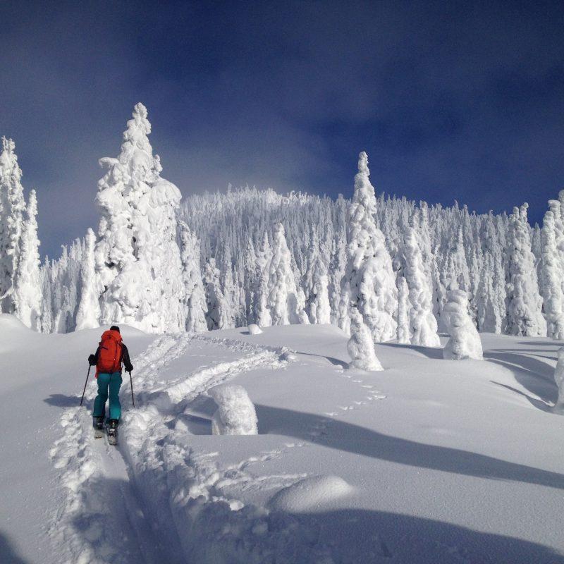 Ski Touring Fernie